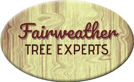 Fairweather Tree Experts